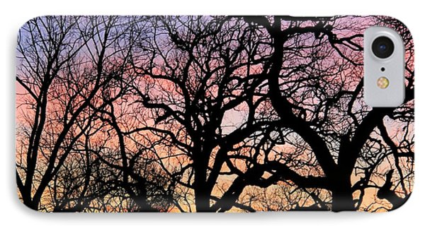 Silhouettes At Sunset IPhone Case by Chris Berry