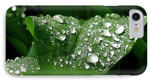 IPhone Case featuring the photograph Silver Drops Of Spring by Al Fritz