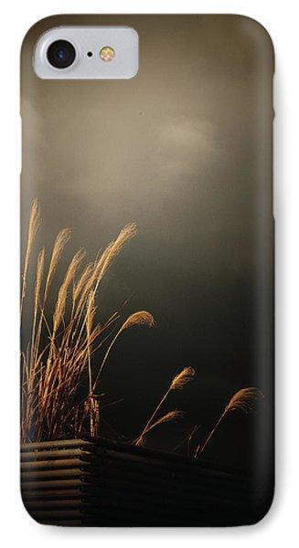 Silver Grass IPhone Case by Rachel Mirror