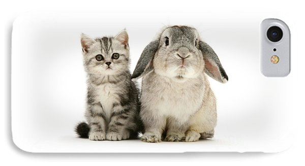 Silver Tabby And Rabby IPhone Case