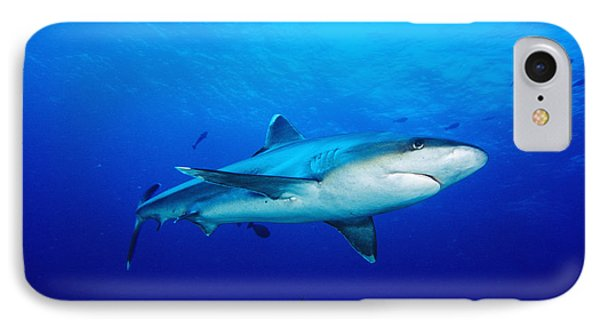 Silvertip Shark In Thailand Phone Case by Dave Fleetham - Printscapes