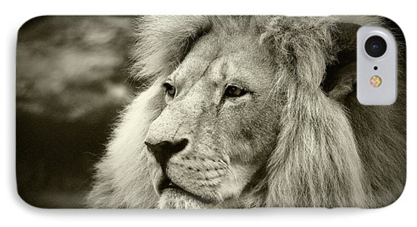 IPhone Case featuring the photograph Simba by Stefan Nielsen