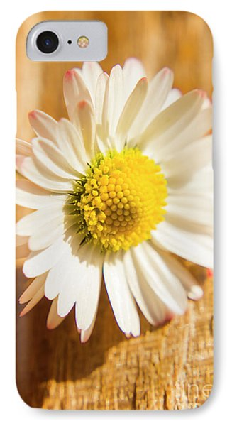 Simple Camomile  In Sunlight IPhone Case