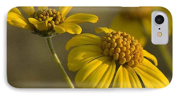 Simplicity IPhone Case by Sue Cullumber