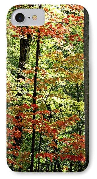 Simply Autumn Phone Case by Joan  Minchak