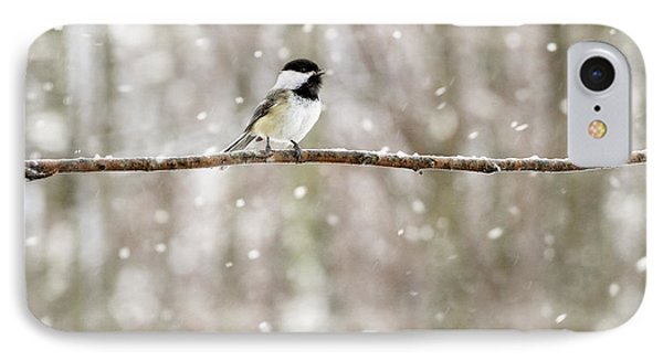Sing Chickadee Sing IPhone Case by Angie Rea