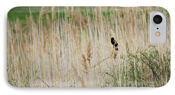 IPhone Case featuring the photograph Sing For Spring by Bill Wakeley