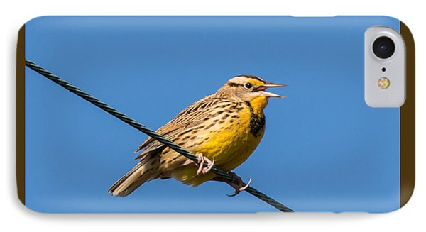 Meadowlark iPhone 7 Case - Singing On The Wire by Jurgen Lorenzen