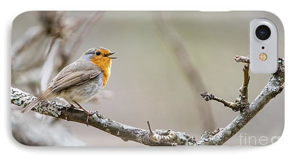 Singing Robin IPhone Case by Torbjorn Swenelius