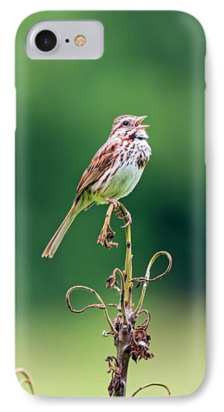 Singing Song Sparrow IPhone Case