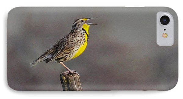 IPhone Case featuring the photograph Singing Warbler by Debby Pueschel