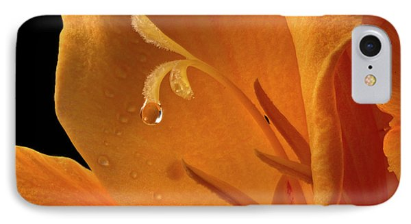 IPhone Case featuring the photograph Single Drop by Jean Noren