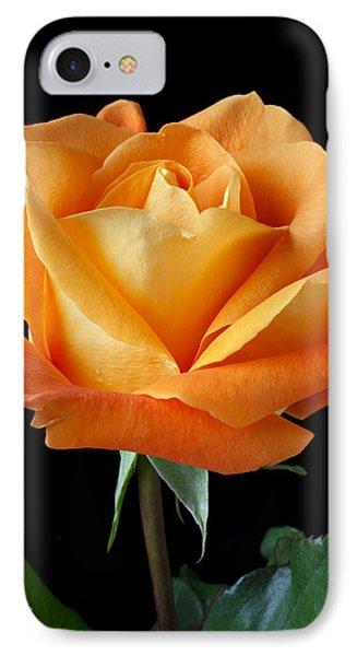 Single Orange Rose Phone Case by Garry Gay