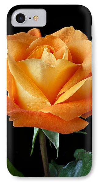 Single Orange Rose IPhone Case by Garry Gay