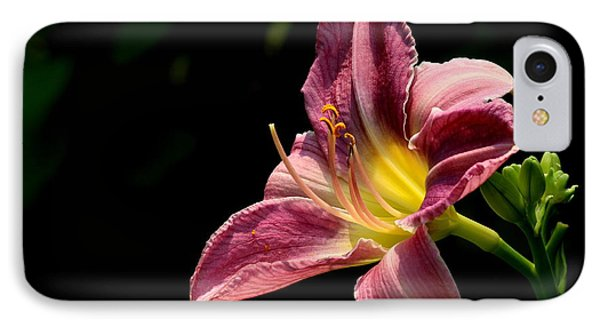 Single Pink Day Lily IPhone Case