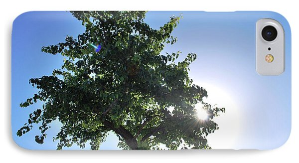 Single Tree - Sun And Blue Sky IPhone Case by Matt Harang
