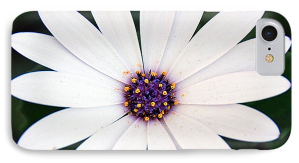 Single White Daisy Macro IPhone Case by Georgiana Romanovna