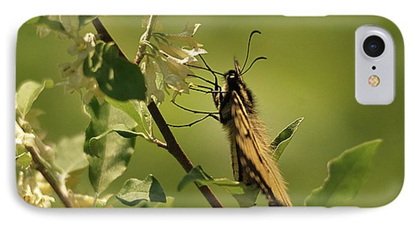 IPhone Case featuring the photograph Sipping In The Shade by Susan Capuano