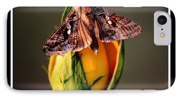 IPhone Case featuring the photograph Sitting Pretty by KayeCee Spain