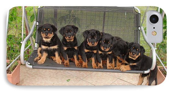 Six Rottweiler Puppies Lined Up On A Swing IPhone Case by Tracey Harrington-Simpson