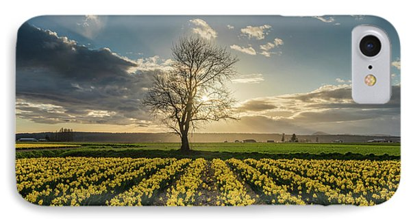 IPhone Case featuring the photograph Skagit Daffodils Lone Tree  by Mike Reid