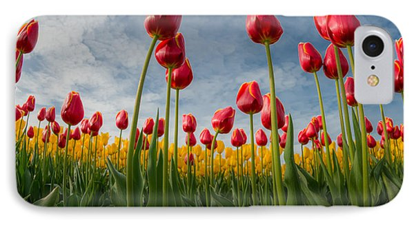 IPhone Case featuring the photograph Skagit Valley Spring Joy by Dan Mihai