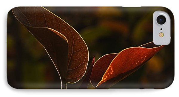 Skc 9841 Lovable Pair IPhone Case by Sunil Kapadia