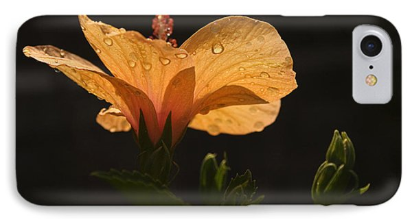 Skc 9937 The Grace Of Hibiscus IPhone Case by Sunil Kapadia