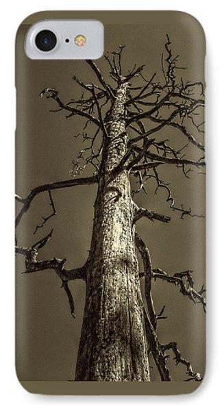 Skeletal Tree Sedona Arizona IPhone Case