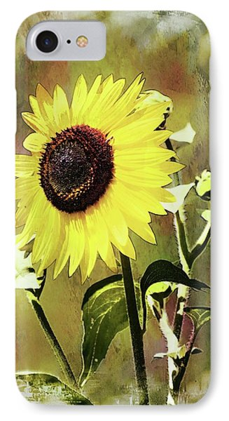 Sketchy Sunflower 3 IPhone Case by Marty Koch
