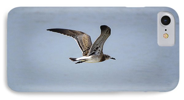 Skimming Seagull IPhone Case by Kenneth Albin