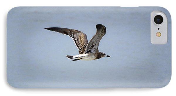 Skimming Seagull IPhone Case