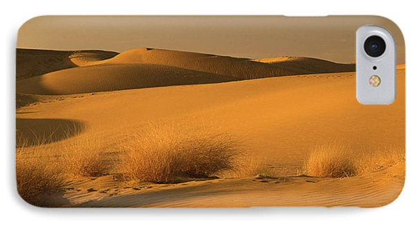 Skn 1124 The Desert Landscape IPhone Case by Sunil Kapadia