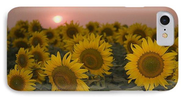 Skn 2178 The Sunflowers At Sunset  IPhone Case by Sunil Kapadia