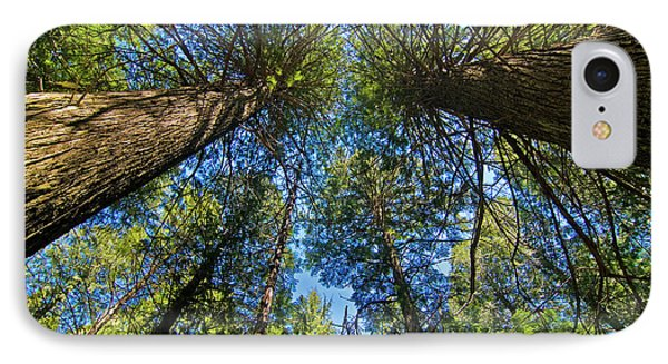 IPhone Case featuring the photograph Skyward by Gary Lengyel