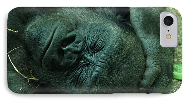 IPhone Case featuring the photograph Sleep Tight by Richard Bryce and Family