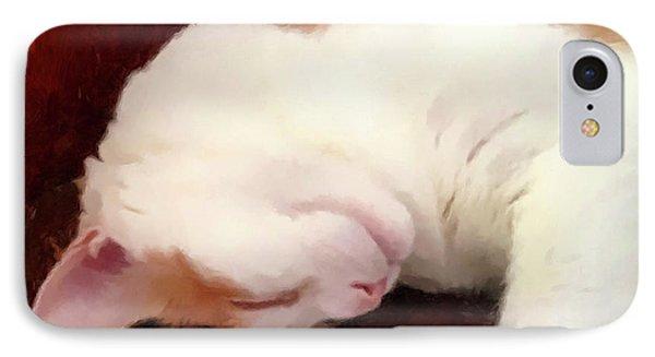 Sleeping Boo IPhone Case