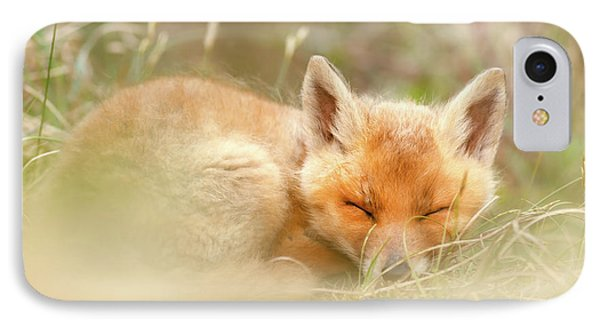 Sleeping Cutie - Red Fox Kit Asleep IPhone Case by Roeselien Raimond