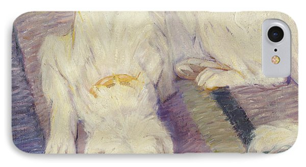 Sleeping Dog IPhone Case by Franz Marc