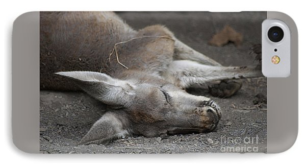 Sleeping Joey 20120714_65a IPhone Case by Tina Hopkins