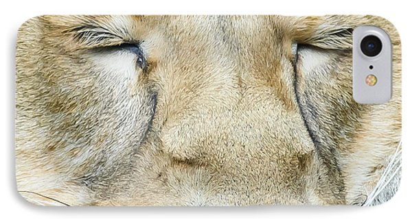 IPhone Case featuring the photograph Sleeping Lion by Colin Rayner