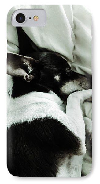 Sleeping Squib IPhone Case by Heather Joyce Morrill