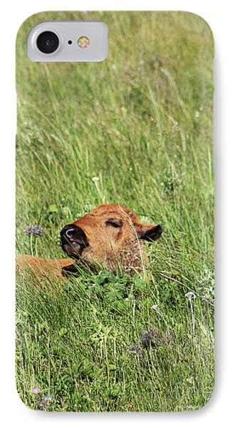 IPhone Case featuring the photograph Sleepy Calf by Alyce Taylor