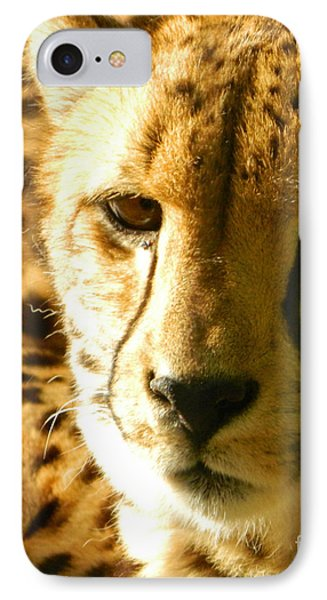 Sleepy Cheetah Cub IPhone Case by Emmy Marie Vickers