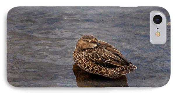 IPhone Case featuring the photograph Sleepy Duck by Arthur Dodd