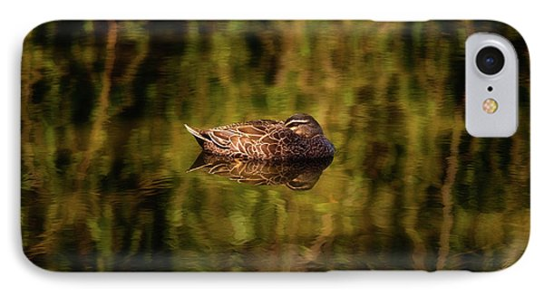 Sleepy Duck, Yanchep National Park IPhone Case by Dave Catley