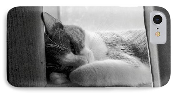 Sleepy Kitty IPhone Case