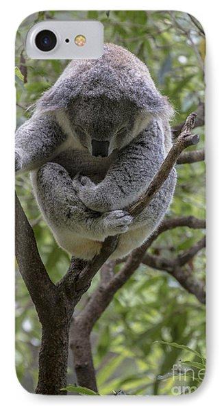 Sleepy Koala Phone Case by Sheila Smart Fine Art Photography