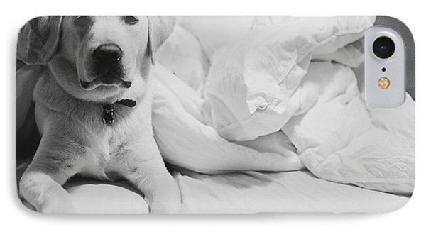 Sleepy Labrador IPhone Case by Louise Fahy