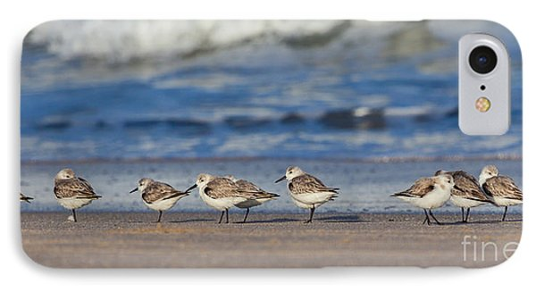 IPhone Case featuring the photograph Sleepy Shorebirds by Michelle Wiarda